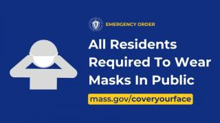State face mask graphic