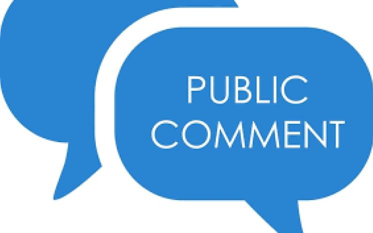 public comment in bubble