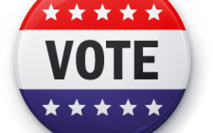 button, red, white & blue with stars & stripes with the text VOTE