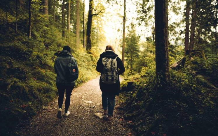 2 people walking away from you on a wooded trail